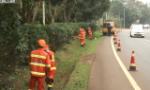 迎博鳌年会:海南交通部门整治路域环境 保障公路安全畅通