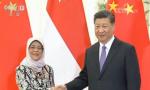 习近平会见新加坡总统