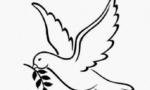 打开 友谊之旅 和平之旅 ——国际舆论高度评价习近平总书记对朝鲜进行国事访问