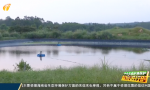 海南通报中央生态环保督察典型案件(2):罗牛山养猪场项目尾水泄露属突发事件 目前管道已修复