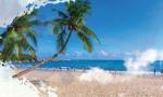 來了,來了!《風生水起 海之南——共和國發展成就巡禮·海南篇》