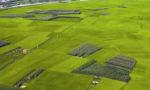 中共中央 国务院关于保持土地承包关系稳定并长久不变的意见