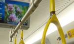 设14个站点!海南这些地区将开行公交化旅游化列车