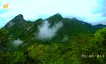 海南国家公园研究院成立:打造高端智库 加快海南热带雨林国家公园建设