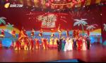 2020年海南省春节联欢晚会 海南卫视大年初一首播