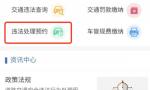 3月26日起,海口公安交警开通交通违法现场处理网上预约平台