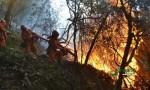 習近平對四川西昌市經久鄉森林火災作出重要指示