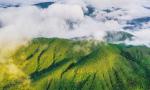 大山深處無人家,雨林內外一家人 海南熱帶雨林國家公園體制試點建設見聞