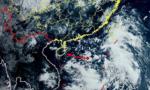 南海热带低压可能于明天生成 7月31日~8月3日海南岛将有较强风雨