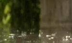 """""""森拉克""""影响趋于结束 未来几天仍是""""雨雨雨"""""""
