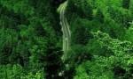 【每日一习话】开展国土绿化行动 加强地质灾害防治