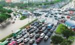 2020年9月海南省小客车增量指标申请审核结果和配置公告