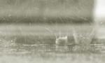 国庆假期雨雨雨!5号起海南将迎返程高峰...还有这些信息你得知道
