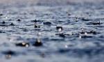 海南变更暴雨四级预警为暴雨三级预警!这三个地方将有强降水