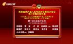 海南省第六届人民代表大会第四次会议执行主席分组名单