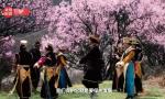习近平西藏行丨桃花致富源 幸福新生活——走进林芝镇嘎拉村