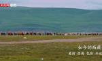 多彩西藏 数说人间奇迹