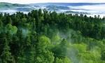 共建万物和谐的美丽家园(共建地球生命共同体)