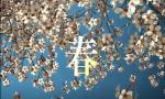 每一帧都很治愈,90秒聆听中国的春夏秋冬