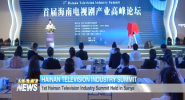 1st Hainan Television Industry Summit Held in Sanya