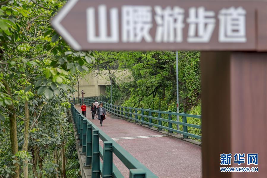 (城市绿道建设·图文互动)(4)重庆山城步道:徜徉在绿水青山间的乡愁记忆