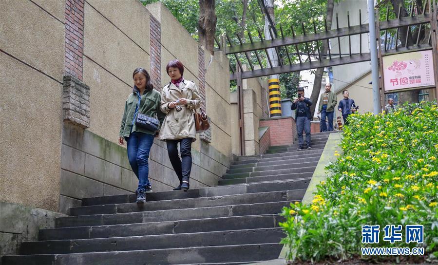 (城市绿道建设·图文互动)(5)重庆山城步道:徜徉在绿水青山间的乡愁记忆