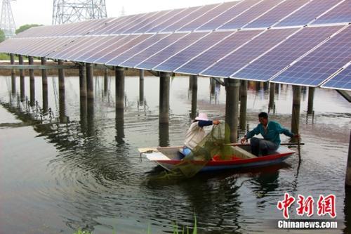 中国节能渔光互补项目 农户正在捕捞小龙虾
