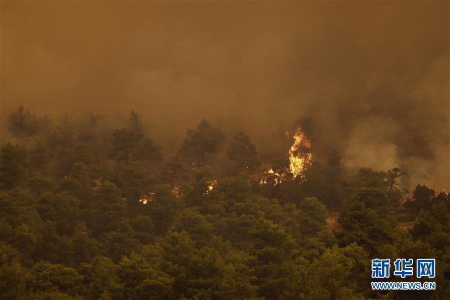 (國際)(2)希臘埃維亞島發生火災
