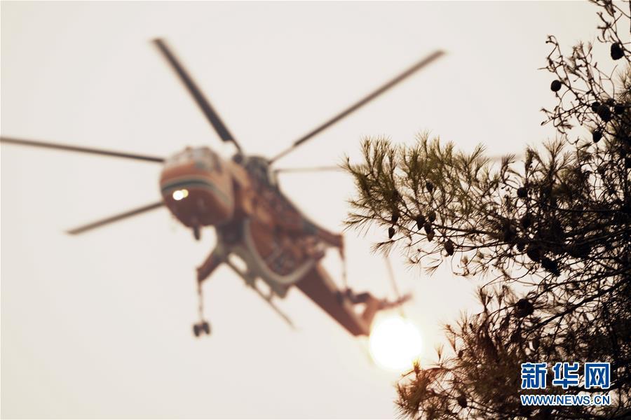 (國際)(5)希臘埃維亞島發生火災