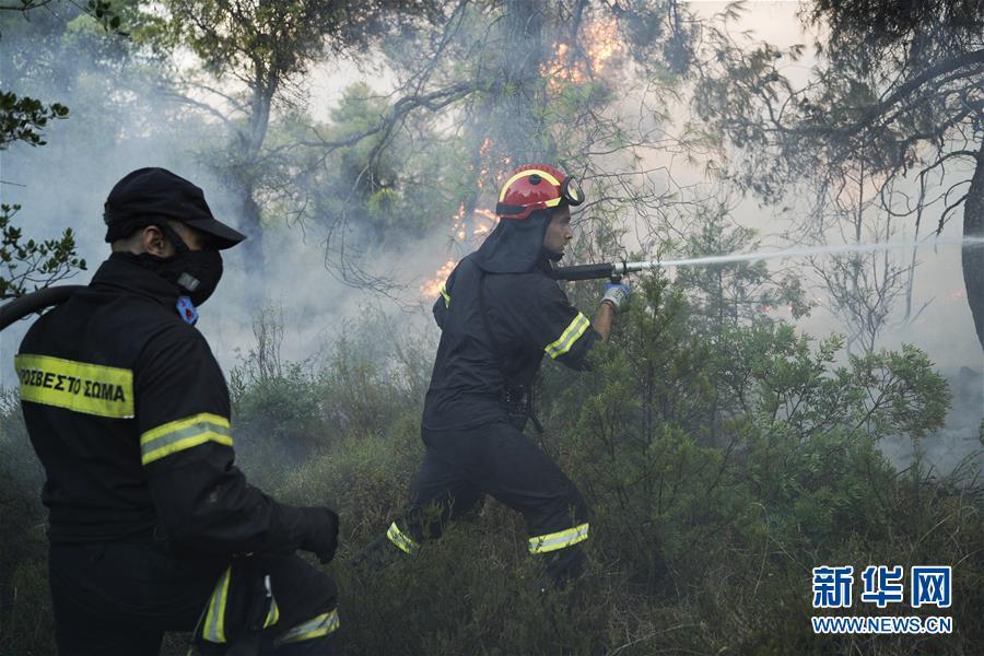 (國際)(6)希臘埃維亞島發生火災