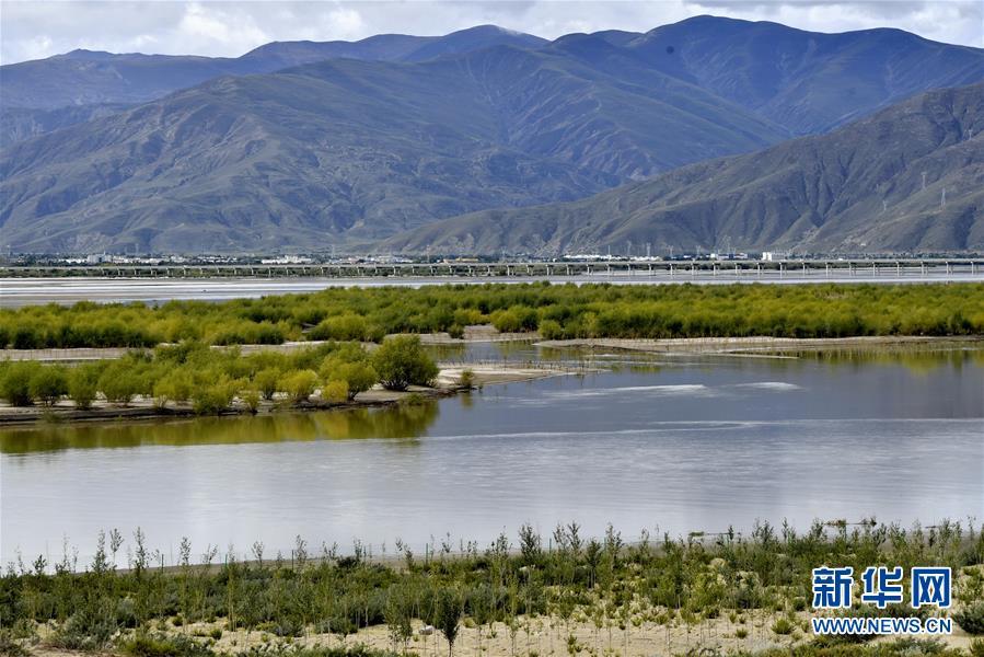 (决战决胜脱贫攻坚·图文互动)(4)荒漠变绿洲 穷乡变富地——雅鲁藏布江山南段40年造林治沙报告