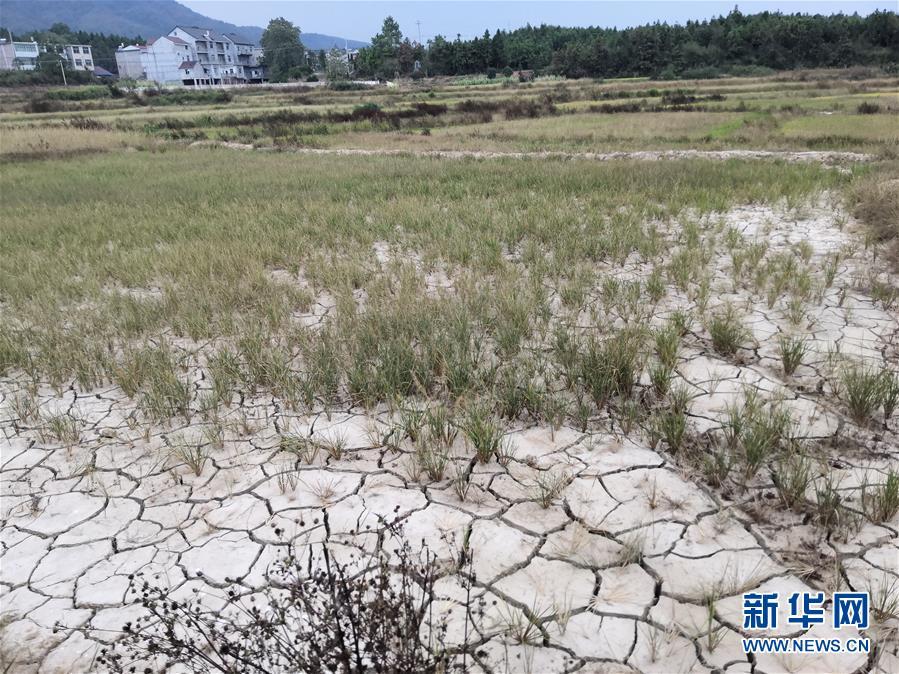 (圖文互動)(2)南方部分地區為何持續大旱?