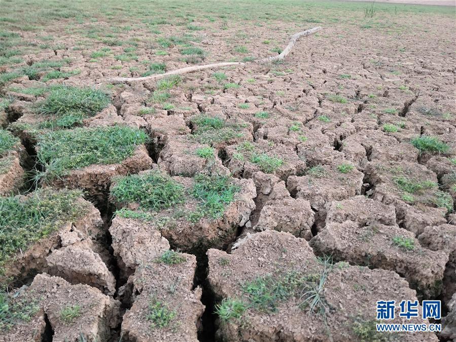 (圖文互動)(1)南方部分地區為何持續大旱?
