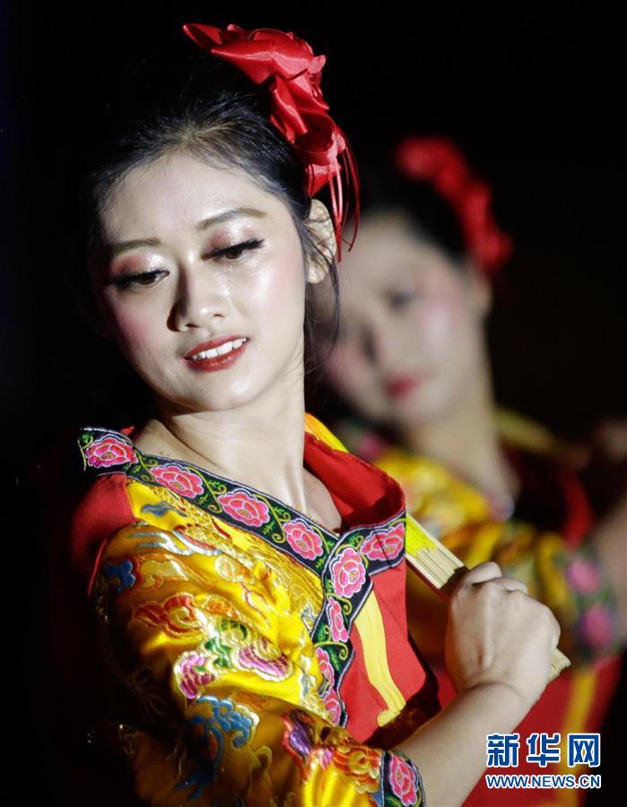(XHDW)(1)2020年墨西哥华侨华人春节联欢晚会举行