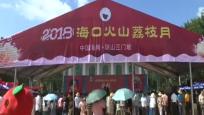 2018年海口火山荔枝月活动开幕