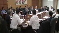 省委七届四次全会分组讨论:推动海南成为新时代全面深化改革开放的新标杆