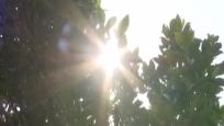 多市縣發布高溫預警 12號起全島緩慢降溫
