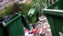 与10个垃圾桶为邻 居民直呼受不了
