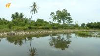 生态人居环境红榜:澄迈文头山村 生态?#38469;?#27835;污 臭池塘变湿地公园
