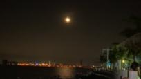 特写:市民游客文明赏月 共建美丽海滨