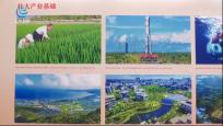 海南成就展:从边陲海岛到改革开放高地