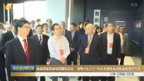 首届博鳌智能电网国际论坛:海南计划2021年初步建成省域智能电网示范区