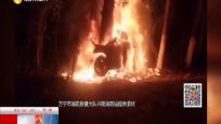汽车撞树燃起大火 醉驾超速引发悲剧