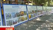 世界地球日:主题活动进公园进学校 共同守护地球保护环境