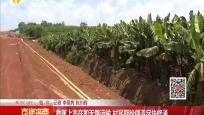 香蕉上市在即无路运输 村民期盼便道尽快修通