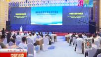 海南举行自贸港贸易投资对接会 助力企业共谋发展
