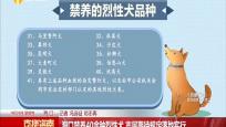海口禁养40余种烈性犬 市民期待规定落地实行