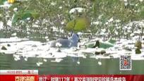 昌江:时隔117年!再次监测到罕见珍稀鸟类棉凫