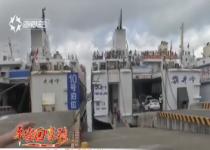 平安回家路:港口迎出行小高峰 旅客点赞预约过海模式