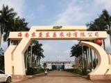 海南农垦设立产业基金 探索产融结合新道路